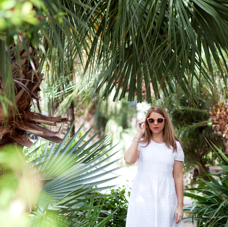 palms_3